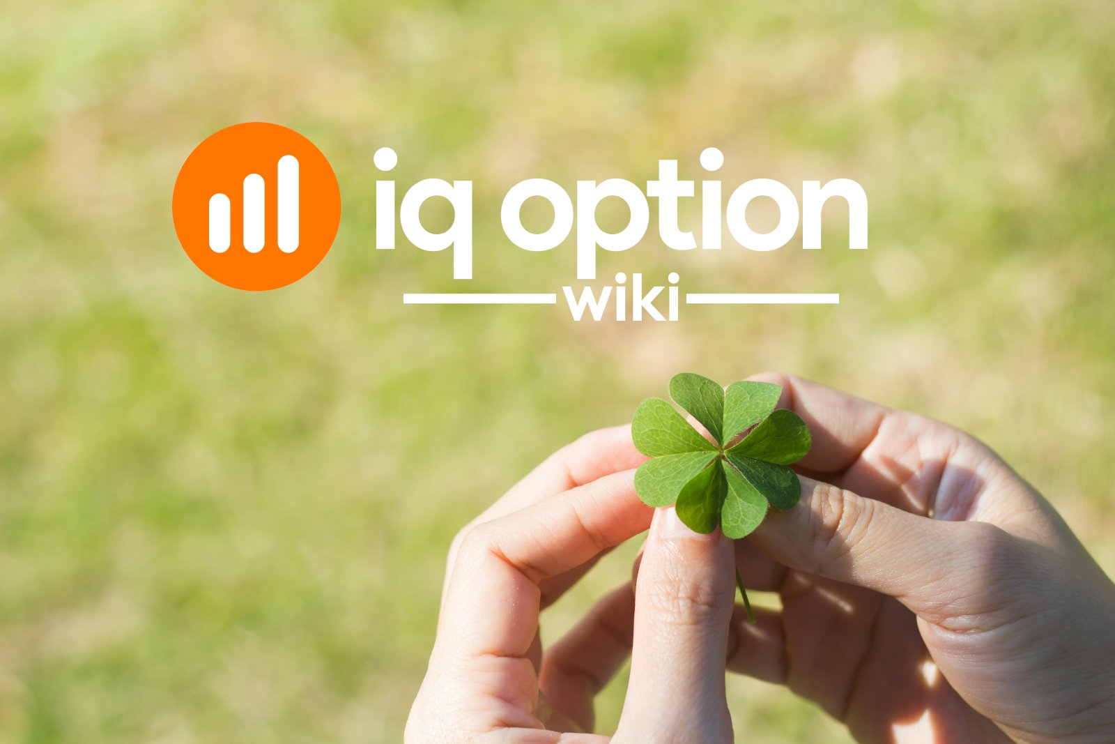 good luck clover from iq option