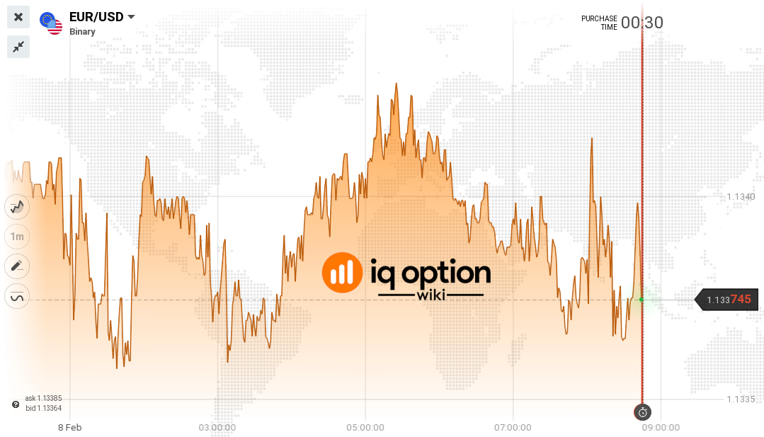 Guide to the IQ Option Price Charts 1