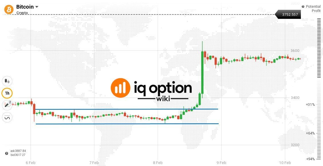 Guide to Trading Bitcoin on IQ Option - IQ Option Wiki