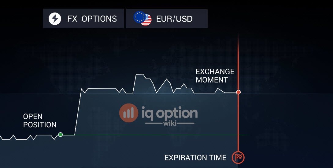 What are FX options at IQ Option